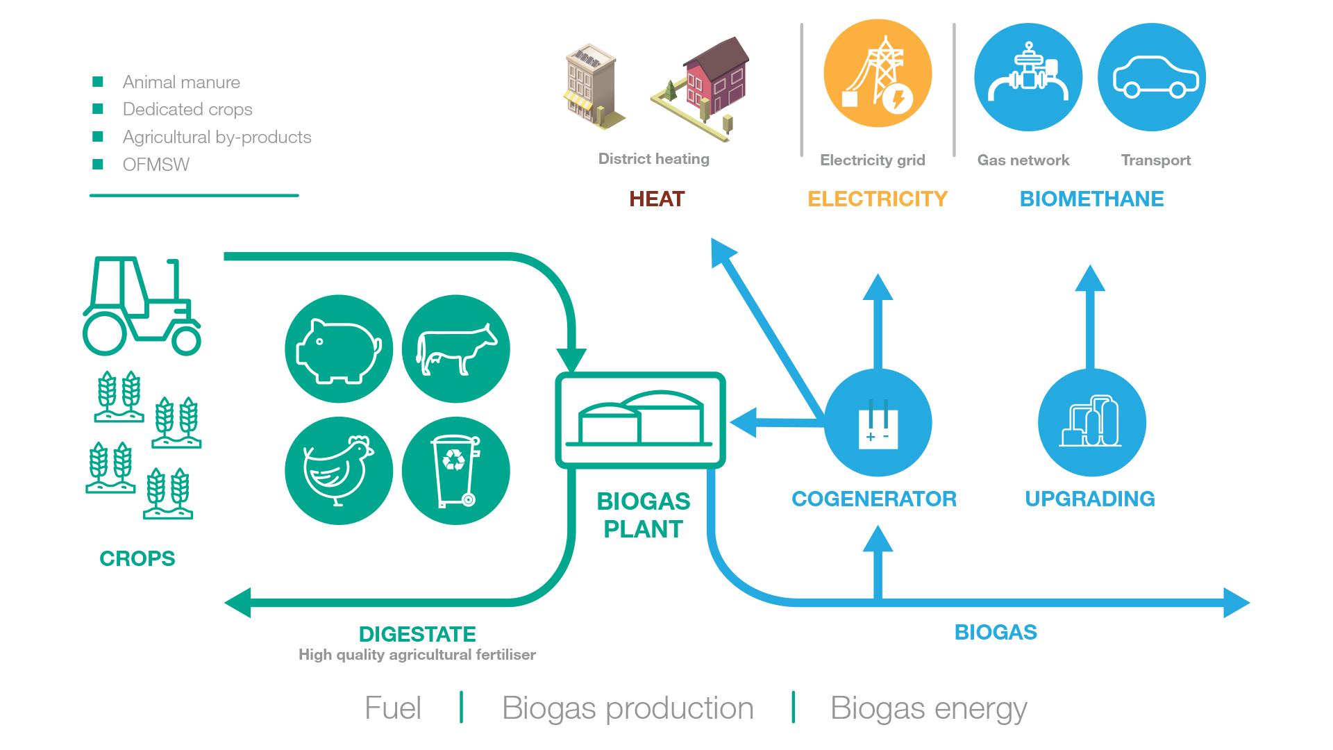 Produzione di biogas e biometano